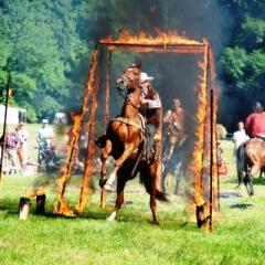 pořádání firemních akcí - drezura koní a western