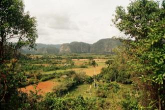 Incentiva na Kubě - Viňales - tabákové plantáže